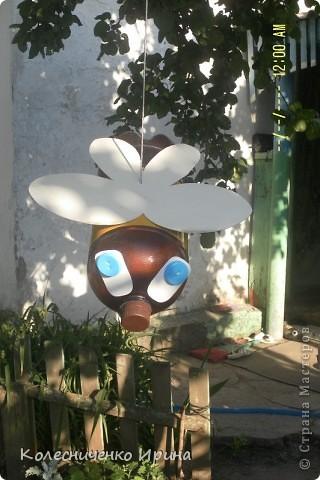 Вот такие пчелки поселились у меня на дереве...идея не моя, увидела в интернете и очень захотелось таких сделать.... я так увлеклась, что сделала сразу две.... эта пчелка голубоглазая...... фото 4