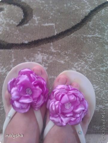 Moi letnie zvetochki (ykrasheniya) фото 2