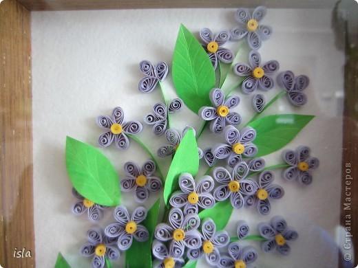 Здравствуйте, дорогие мастерицы! Совсем забыла про эту свою работу. Очень давно накрутила цветочков, подсмотрела на сайте http://blog.naver.com/paper6262/. Хотелось какую-то маленькую картинку в небольшую рамочку. Собрала себе такой букетик, а потом подарила его мамуле на день рождения. фото 3