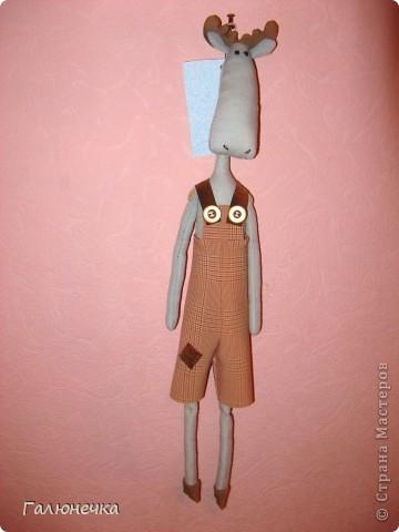 Рада,что заглянули)немного озорных,смешнючих и серьезный игрулечек)на радость и на хорошее настроение!!!! ЖираФа красавица)деловушкинаааааа-в сумочке носит с собой мешочек ароматный-дамаааа))) фото 9