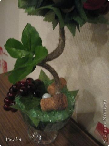 Здравствуйте, мои дорогие жители Страны Мастеров!!! Сегодня я хочу показать вам свой новый топиарий--виноградный. Подобный у меня уже был, но я оставила его себе, а теперь решила сделать ещё один. (вдруг он кому-нибудь приглянется :))) фото 7