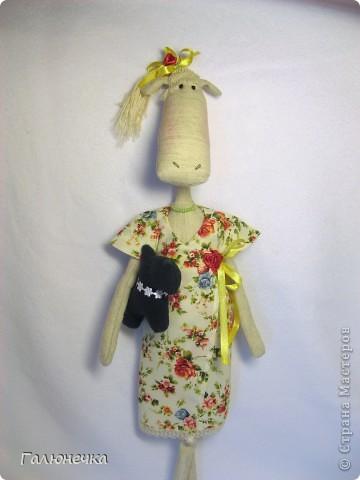 Рада,что заглянули)немного озорных,смешнючих и серьезный игрулечек)на радость и на хорошее настроение!!!! ЖираФа красавица)деловушкинаааааа-в сумочке носит с собой мешочек ароматный-дамаааа))) фото 18