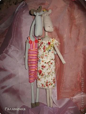 Рада,что заглянули)немного озорных,смешнючих и серьезный игрулечек)на радость и на хорошее настроение!!!! ЖираФа красавица)деловушкинаааааа-в сумочке носит с собой мешочек ароматный-дамаааа))) фото 19