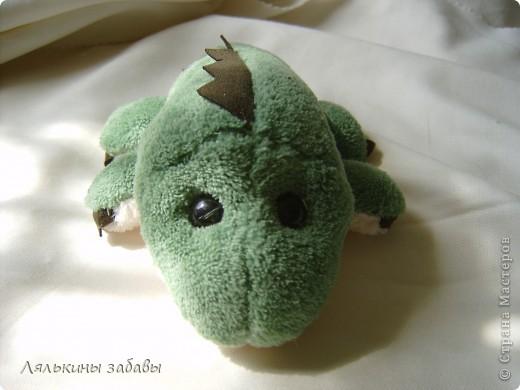 """крокодайлы ( из разряда """"прикол"""") фото 3"""