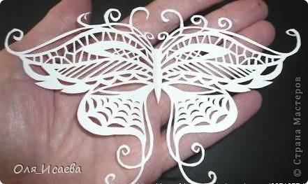 И опять бабочки фото 3