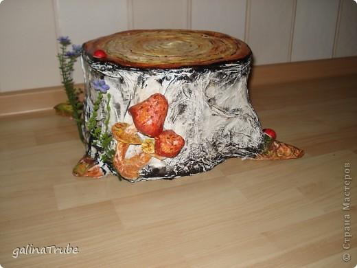 Сяду на пенек, съем пирожок фото 1