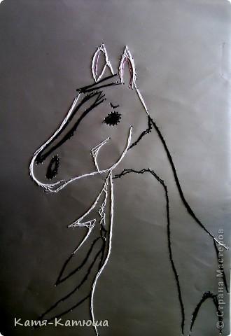 Ах, вы кони, мои кони... фото 1