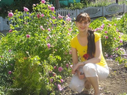 Чудесные розы фото 62