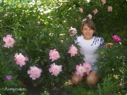 Чудесные розы фото 45