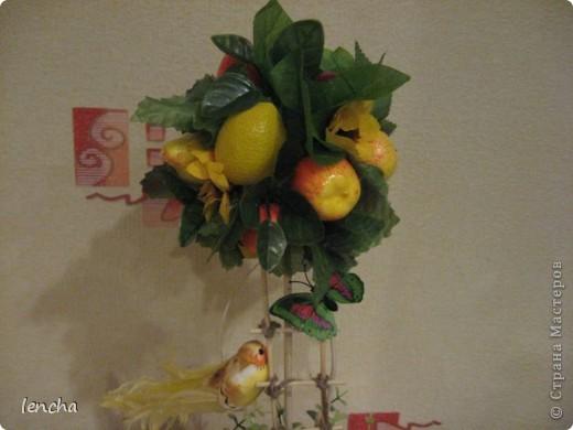 И снова, здравствуйте, мои дорогие!!!!!!!!! Вчера я вам показала свой повторюшный виноградный топиарий, НО......сделала я вчера два топиария, просто успела сфоткать и загрузить только один. А сегодня показываю вам свою новиночку---фруктовое деревце. фото 2