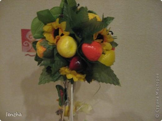 И снова, здравствуйте, мои дорогие!!!!!!!!! Вчера я вам показала свой повторюшный виноградный топиарий, НО......сделала я вчера два топиария, просто успела сфоткать и загрузить только один. А сегодня показываю вам свою новиночку---фруктовое деревце. фото 4
