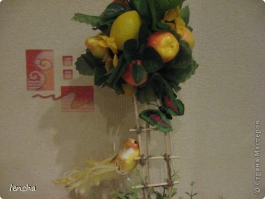 И снова, здравствуйте, мои дорогие!!!!!!!!! Вчера я вам показала свой повторюшный виноградный топиарий, НО......сделала я вчера два топиария, просто успела сфоткать и загрузить только один. А сегодня показываю вам свою новиночку---фруктовое деревце. фото 7