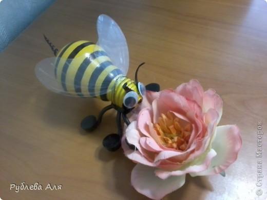 Пчела Жужа фото 1