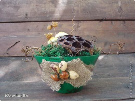 Вариант №1. Внутри оазис, сверху мох и немного сизали. Далее фантазируем с сухоцветом и лозой.   фото 4