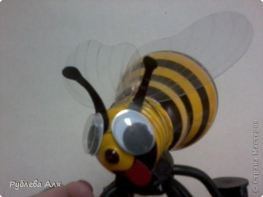Пчела Жужа фото 2