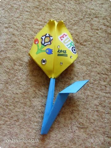 Вот такой тюльпан к EURO 2012. фото 1