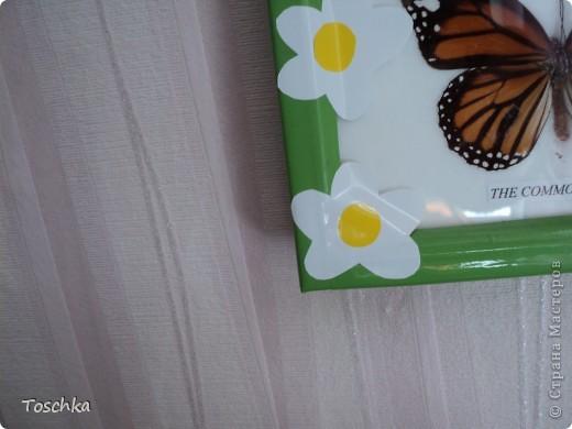 Вот так приукрасила чёрную рамку с бабочками. Обклеила её пленкой зелёной по периметру. Она сразу стала веселее. фото 2
