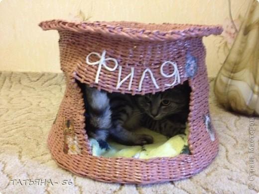 Ну вот и у моего кота появился свой двухэтажный дом. фото 4