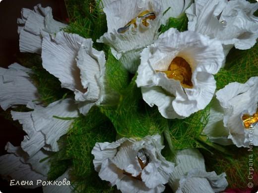 белые розы..... фото 5