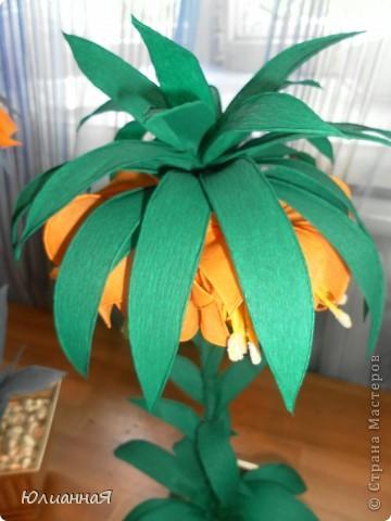 Рябчики королевские....Видела такой цветок в живую...очень мне понравился...вот и решила сделать такой же.. фото 3