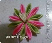 попробовали с дочкой делать цветочки канзаши. фото 2