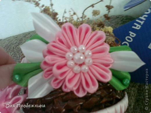 Любимые цветочки! фото 2
