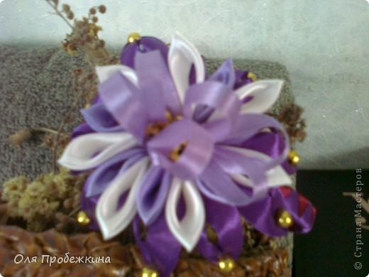 Любимые цветочки! фото 5