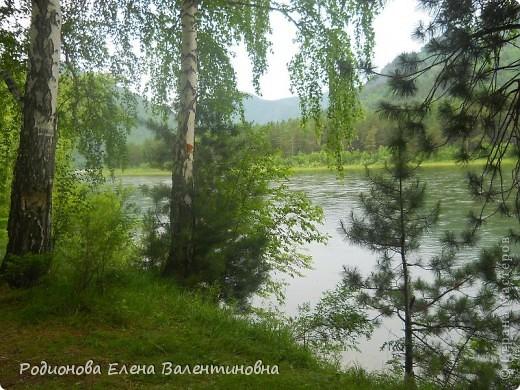 """Были сегодня с семьёй на природе, фотографировались. И что-то так захотелось поделиться с вами, показать райский уголок, в котором мы живём. Это пригород Абазы, что в Хакасии. По легенде """"Абаза"""" - означает """"медвежья берлога"""". фото 1"""