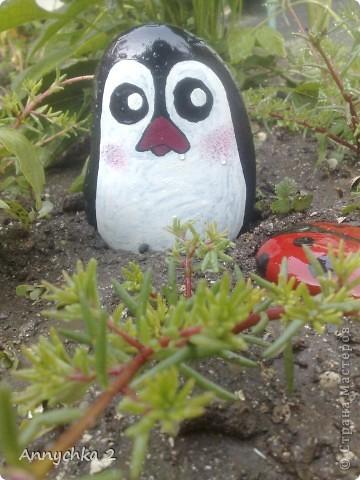 ну вот такие пингинчики у меня получились)) в очередной раз притащила кучу камней с берега (мы живем в 100 метрах от каспийского моря) и намалевала себе и родным на клумбы) фото 3