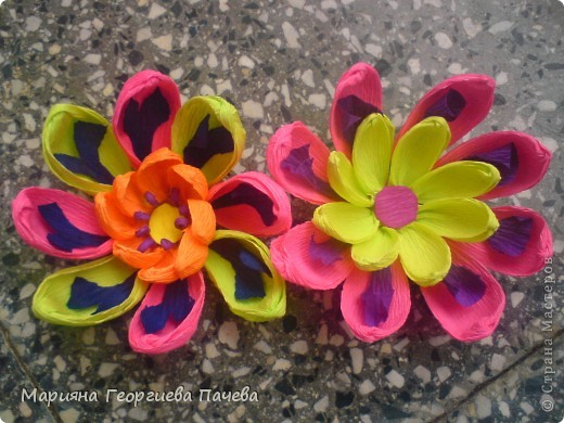цветя фото 5