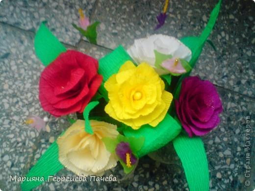 цветя фото 16