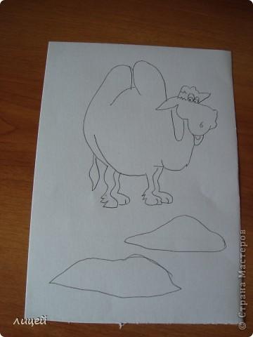 Верблюд в пустыне фото 3