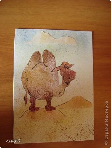 Верблюд в пустыне фото 1