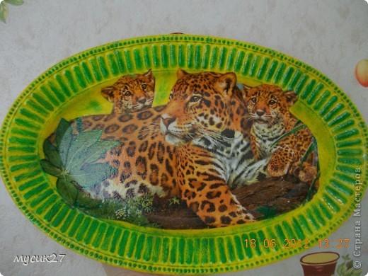 Полюбившиеся многим леопарды. Использовала пластиковую тарелку, которая была уже совсем старая и страшненькая. Сама не знаю почему не выбросила её раньше, вот и пригодилась. фото 1