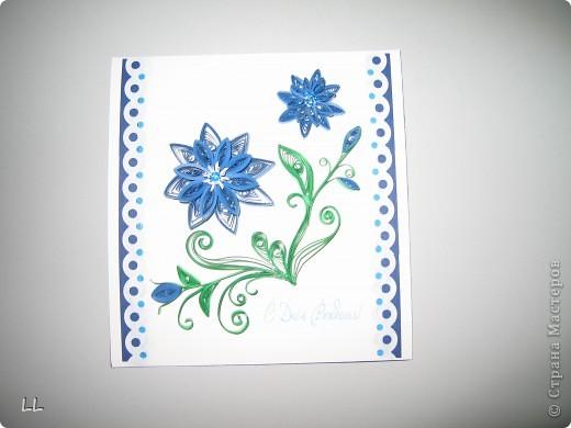 синие цветы фото 1