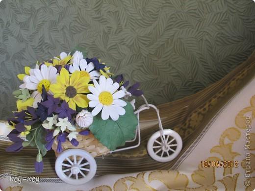 Весёлый велосипед фото 1