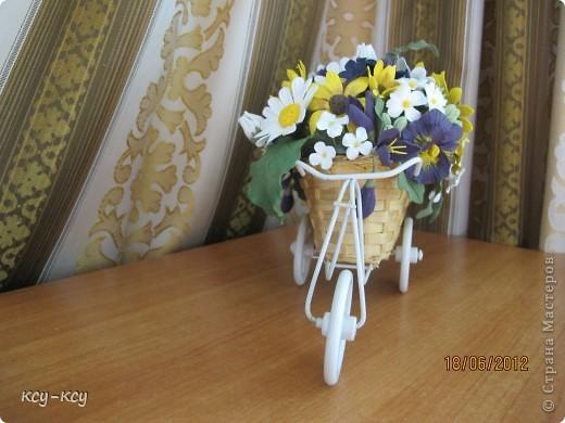 Весёлый велосипед фото 2