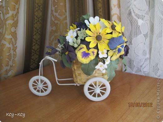 Весёлый велосипед фото 3