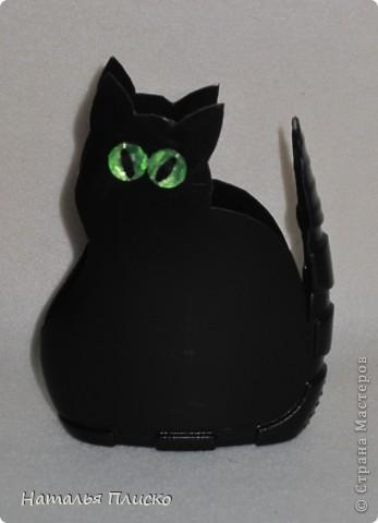 Хочу быть чёрной кошкой с зелёными глазами: Загадочной, изящной и чуточку коварной! Ведь это в каждой женщине присутствует! Я знаю! Под белыми, пушистыми всё тщательно скрываем! Зачем скрывать? Не надо! Давайте же меняться - Из серых кошек в будни, в Багиры превращаться! Всё это вдохновляет на радость без причин! А как уж будоражит фантазию мужчин! И пусть мне говорят, что с рыжей Джесс мы схожи, На чёрную, хоть изредка, похожей буду тоже! Заманчив образ этот для женщины любой, Коварством привлекает на пару с красотой! Не будем увлекаться и сильно в роль входить, Но иногда вполне такою можно быть!!! (Ольга Матвеева Панфилова) фото 1