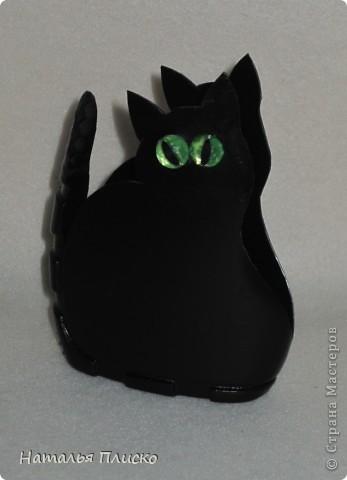 Хочу быть чёрной кошкой с зелёными глазами: Загадочной, изящной и чуточку коварной! Ведь это в каждой женщине присутствует! Я знаю! Под белыми, пушистыми всё тщательно скрываем! Зачем скрывать? Не надо! Давайте же меняться - Из серых кошек в будни, в Багиры превращаться! Всё это вдохновляет на радость без причин! А как уж будоражит фантазию мужчин! И пусть мне говорят, что с рыжей Джесс мы схожи, На чёрную, хоть изредка, похожей буду тоже! Заманчив образ этот для женщины любой, Коварством привлекает на пару с красотой! Не будем увлекаться и сильно в роль входить, Но иногда вполне такою можно быть!!! (Ольга Матвеева Панфилова) фото 2
