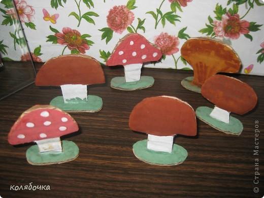 Уже в лесах появились первые грибочки,,а у нас в квартире уже больше недели то в одном месте,то в другом вырастут,а Макс бегает с корзинкой собирает.  фото 1