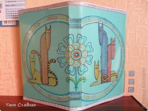 Мастер-класс Поделка изделие Роспись Обложки для книг Краска Нитки Сутаж тесьма шнур фото 1