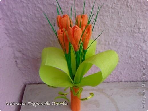 цветя фото 11