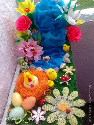 цветя фото 15