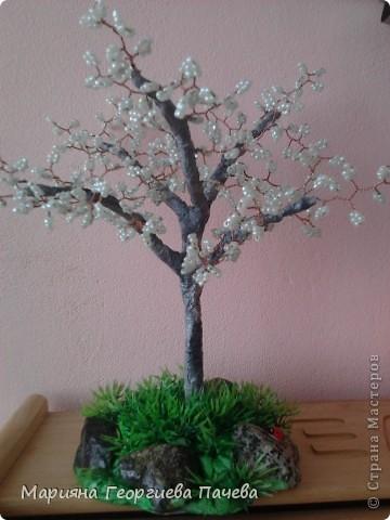 дръвчета от мъниста фото 5