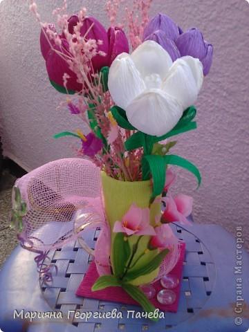 цветя фото 13