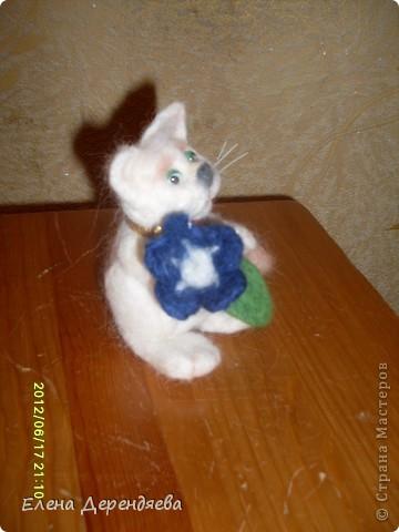 """""""Плюшевый"""" кот фото 3"""
