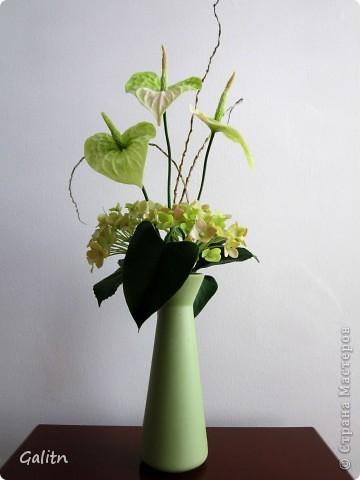 Немногие жалуют этот красивый цветок. а мне он кажется очень привлекательным. расцветки от темно-зеленого до ярко-красного. А я выбрала такую зеленовато розовую гамму. Ну и моя первая гортензия, все никак не доходили до неё руки. Что получилось -судить вам...... фото 2