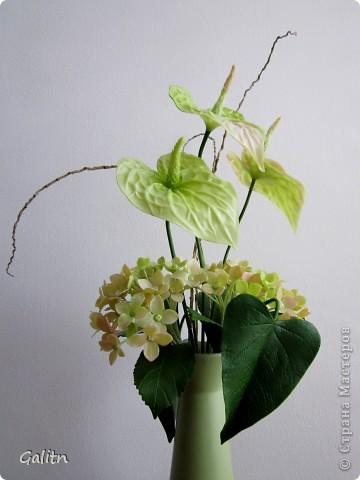 Немногие жалуют этот красивый цветок. а мне он кажется очень привлекательным. расцветки от темно-зеленого до ярко-красного. А я выбрала такую зеленовато розовую гамму. Ну и моя первая гортензия, все никак не доходили до неё руки. Что получилось -судить вам...... фото 1