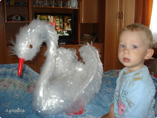 Никита рассматривает лебедя. фото 2